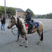 Een echte pony op bezoek