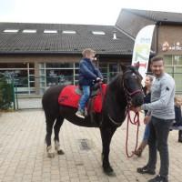 Mex op bezoek. Wie durft er al op een grote pony?